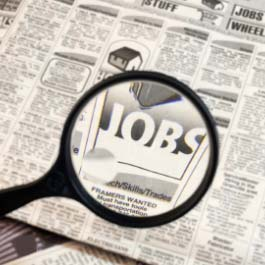 View our collection of educational videos and articles about jobs and employment.